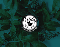 Logo Design for Herbal Brand Product