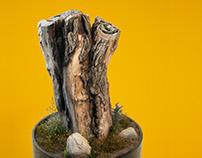 Diorama 3D