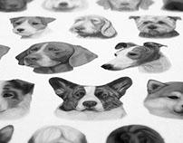 Nash Academy Illustration & Print
