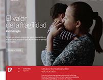 Cáritas Barcelona / Web Site