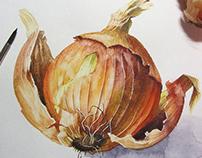 Onion (many)