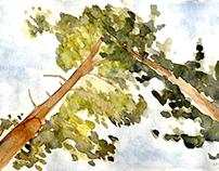 Watercolor sketches abroad