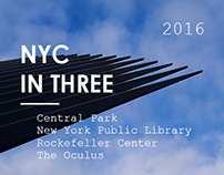 Suburban Wanderers | NYC