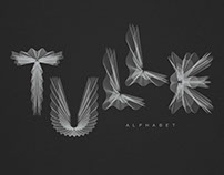 Tulle Alphabet A type every day