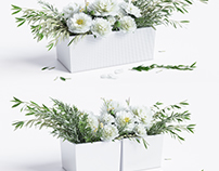 Flower compositions / 3d model