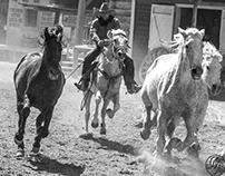 Cowboys And Horses!