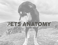 Brand | YouTube Channel | Pets Anatomy