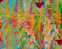 Tropical Samba