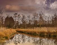 Province of Groningen