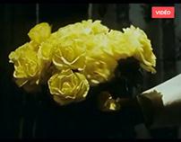 🎦 Montage :: Trailer L'Amour Fou de Michel Rodde