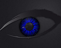Illustrator's Eye