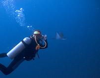 Proper Breathing in Scuba Diving