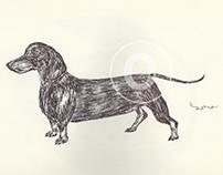 BALLPEN DOGS