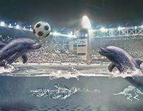 دلفين البحر