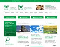 SENAR Concept Website