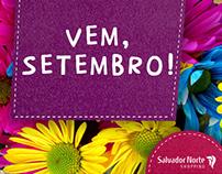 Salvador Norte Shopping - Postagens Conceituais (2015)