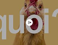 Vidéo pour le compte de Hautefeuille