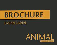 Brochure / Animal Publicidad