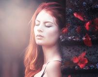 Dream of red velvet