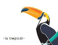 - la tropicál -