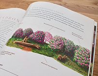 Garden Design illustrations