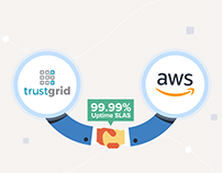 Trustgrid - VIdeo Explainer