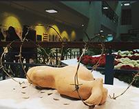 Başkent University 7rd Art And Culture Week Exhibitions