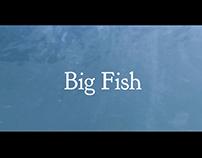 Big Fish Credits - Video making/ motion