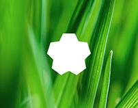 Rozkvit — Logo and Brand Identity