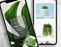 Plant Bae App design