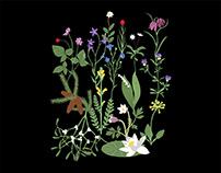 Flora of Sweden - Surface Design