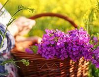 Douceur de printemps | Cueillette locale