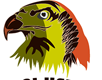 eagle illustrated design