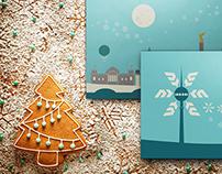 MEG Christmas Project