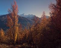 Autumn's frames