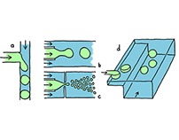 Microfluidic illustrations