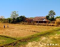 Kailali 2015