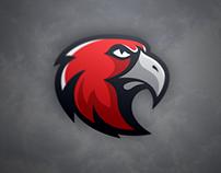 Hawk Timelapse Video