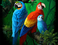 Parrots for calendar