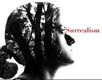 Surrealism Promo (Video)