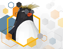 IBM LinuxONE™ Wired Takeover Campaign