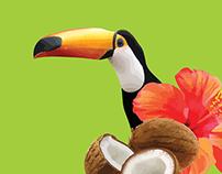 Pimpim Tropical Lollies - Packging