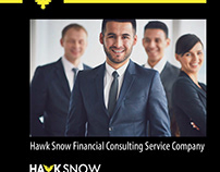 Hawk Snow Financial Consulting Service Company
