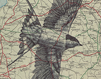 bic biro drawing on a antique map