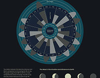Moon and Tide Infographic