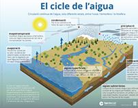 Infografia 'El cicle de l'aigua'