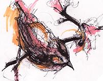 ARTBOOK 2015 : Bird