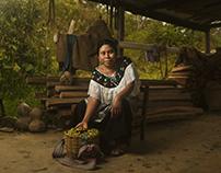 The Raw Gold of México: Coffee