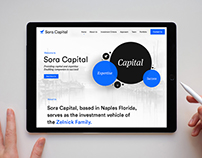 Sora Capital - Investment Expertise