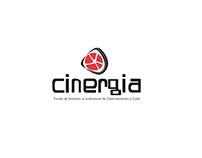 Book Design | Cinergia | Costa Rica